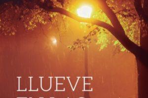 """Olano """"Llueve en las farolas"""" PRESENTACIÓN DE LIBRO @ elkar Gasteiz"""